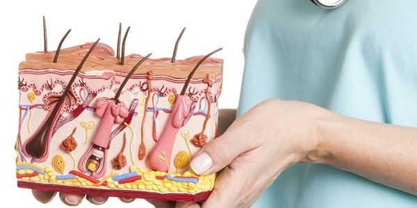 dermatolog-venerolog
